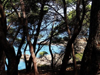Punta Giglio - Alghero