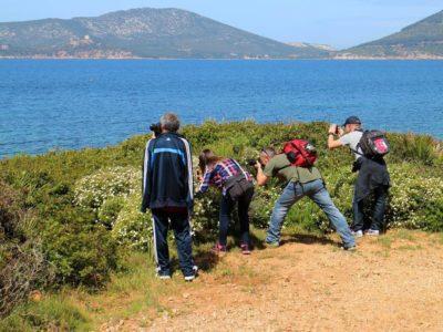 Invaders a Punta Giglio - Alghero